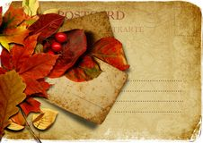 Free Vintage  Postcard With Autumn Leaves Stock Photography - 26976072