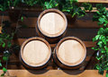 Free Three New Barrels For Wine Stock Photography - 26982962