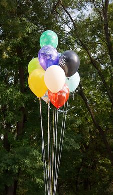 Free Multi Colored Party Balloons Royalty Free Stock Image - 26983406