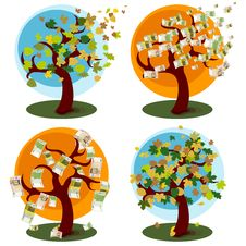Money Tree And Tree With Autumn Leaves Royalty Free Stock Images