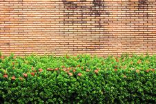 Free Brick Wall Stock Photography - 26989522