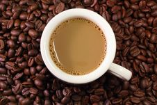 Free Coffee Milk And Beans Royalty Free Stock Photos - 26989758