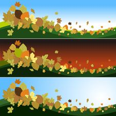 Free Autumn Leaves In The Wind Stock Photo - 26994680
