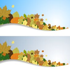 Free Autumn Leaves In The Wind Stock Photography - 26994692