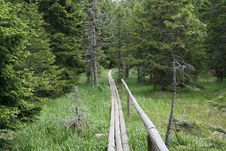 Free Wooden Path Royalty Free Stock Photography - 271447