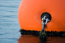 Free Orange Buoy With Chain Stock Photography - 272502