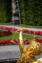 Free Cupid Royalty Free Stock Photo - 2700155