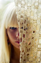 Free Blond Woman S Face Behind Net Royalty Free Stock Images - 2704679