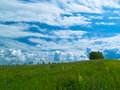 Free Meadow And Clouds Horizontal Stock Image - 2709201