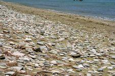 Pebbly Sandy Beach Royalty Free Stock Image