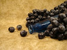 Free Black Grapes And Blue Bottle Stock Image - 2701261