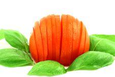 Free Fresh Tomato Stock Images - 2705534