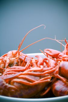 Free Boiled Crayfish In White Bowl Stock Photography - 2709182