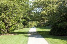 Free Green Path Stock Image - 27006421
