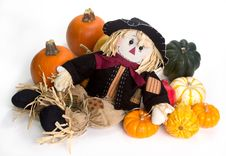 Free Harvest Scarecrow Royalty Free Stock Photos - 27007178