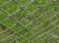 Free Wire Netting, Fence, Gardening Royalty Free Stock Photography - 27019497