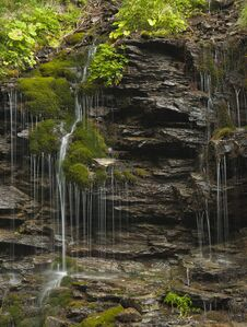 Free Little Waterfall In The Forest Stock Photos - 27010083