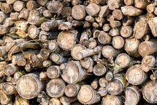Wood In Pile Outdoor Stock Images