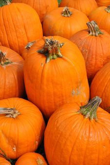 Free Pumpkin Royalty Free Stock Photography - 27016197