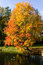 Free Autumn Landscape Stock Photography - 27013512