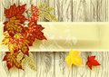 Free Autumn Vector Royalty Free Stock Photography - 27021027