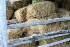 Free Hay In The Old Barn Royalty Free Stock Photo - 27020995