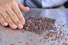 Free Cocoa Nibs Stock Photography - 27024612