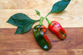 Free Two Peppers On Cutting Board Royalty Free Stock Photos - 27033258