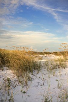 Free Pensacola Beach Dunes At Sunset Royalty Free Stock Photos - 27033228
