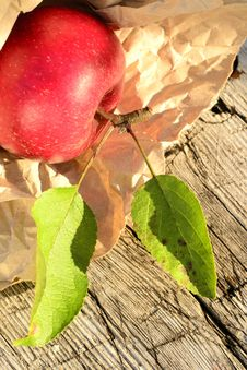 Free Apple Harvest Time Stock Image - 27039911