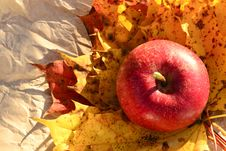 Free Apple And Autumn Leaves Royalty Free Stock Images - 27039989