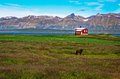 Free Iceland Red House In The Meadow Stock Images - 27042384