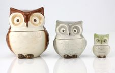 Free Owl Cups Stock Photos - 27044983