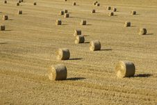 Bales In Field Stock Images