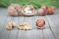 Free Fruits Nuts For Texture Board. Stock Image - 27057251