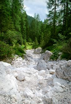 Free Dry River Royalty Free Stock Photography - 27054897