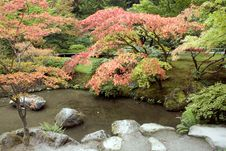 Free Autumn Charm In Japanese Garden Stock Photos - 27059003