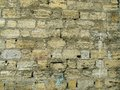 Free Coquina Wall Royalty Free Stock Images - 27067689