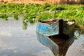 Free Lotus Lake Royalty Free Stock Photos - 27069308