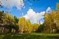 Free Woodland Scene Stock Images - 27072574