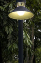 Free Lighting In Park Royalty Free Stock Images - 27074239