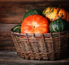 Free Harvested Pumpkins Stock Photo - 27072780