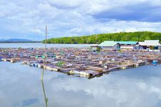 Free Fishermen Village Royalty Free Stock Images - 27073909