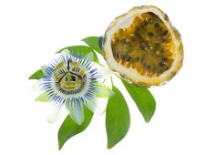 Free Passionflower With Cut Maracuya Stock Photos - 27078753