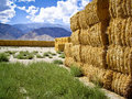 Free Golden Hay Bales Stock Images - 27084194