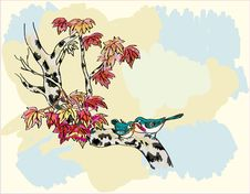 Free Birch ,bird , Spring , Postcard . Stock Photo - 27088400