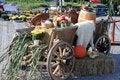 Free Autumn Vegetables Royalty Free Stock Photos - 27094448