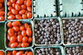 Free Tomato Blue Berry Fruit For Sale Royalty Free Stock Photo - 27095635