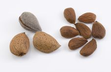 Free Almond Nuts Stock Images - 27092804