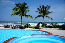 Free Palm Tree And Pool Royalty Free Stock Photos - 27092978